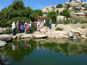 A Delightful Day On The Deerhorn Valley Home And Garden Tour East County Magazine