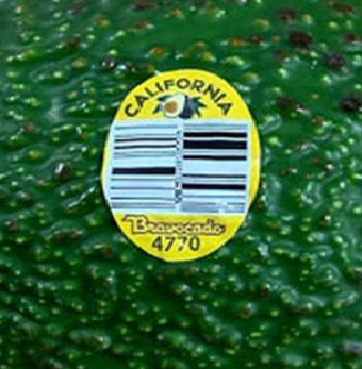 Image result for avocado recall