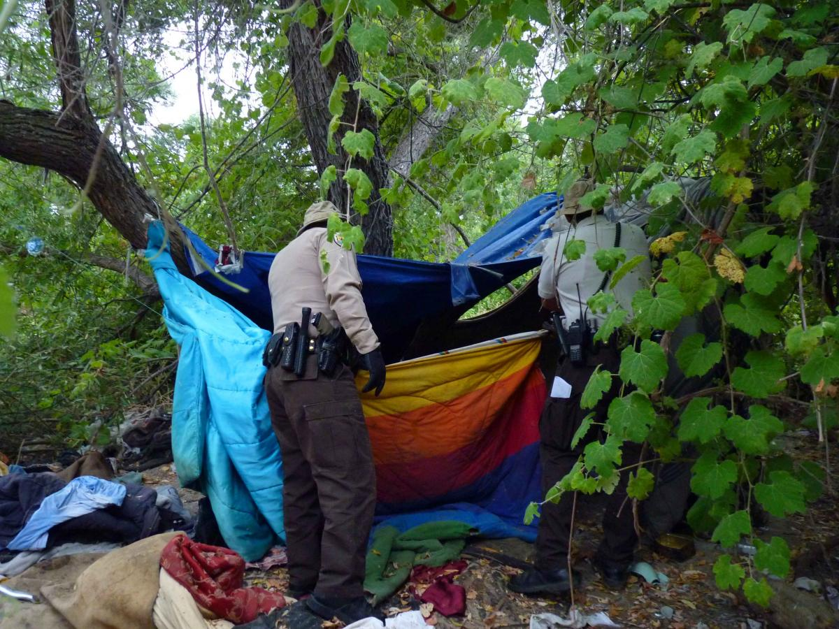 East County Mayors React To Homeless Count Findings East