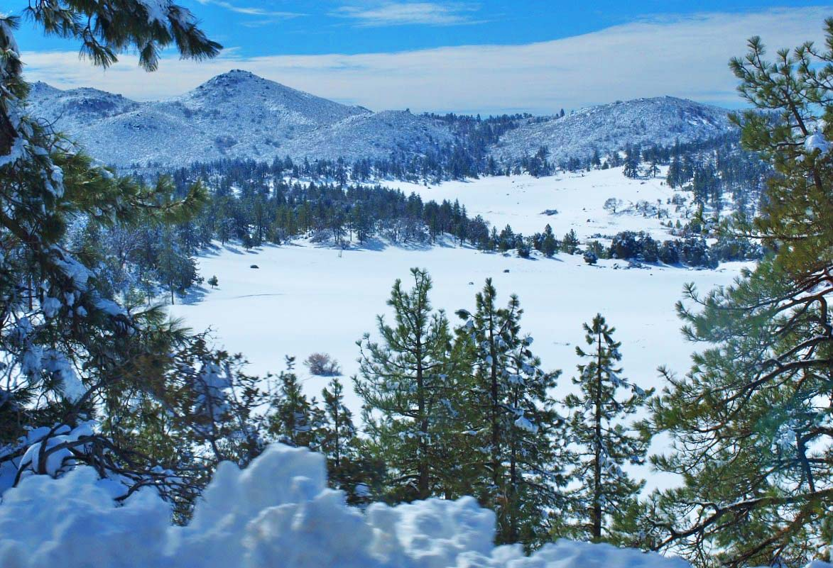 mount laguna Mount laguna tourism: tripadvisor has 80 reviews of mount laguna hotels, attractions, and restaurants making it your best mount laguna resource.