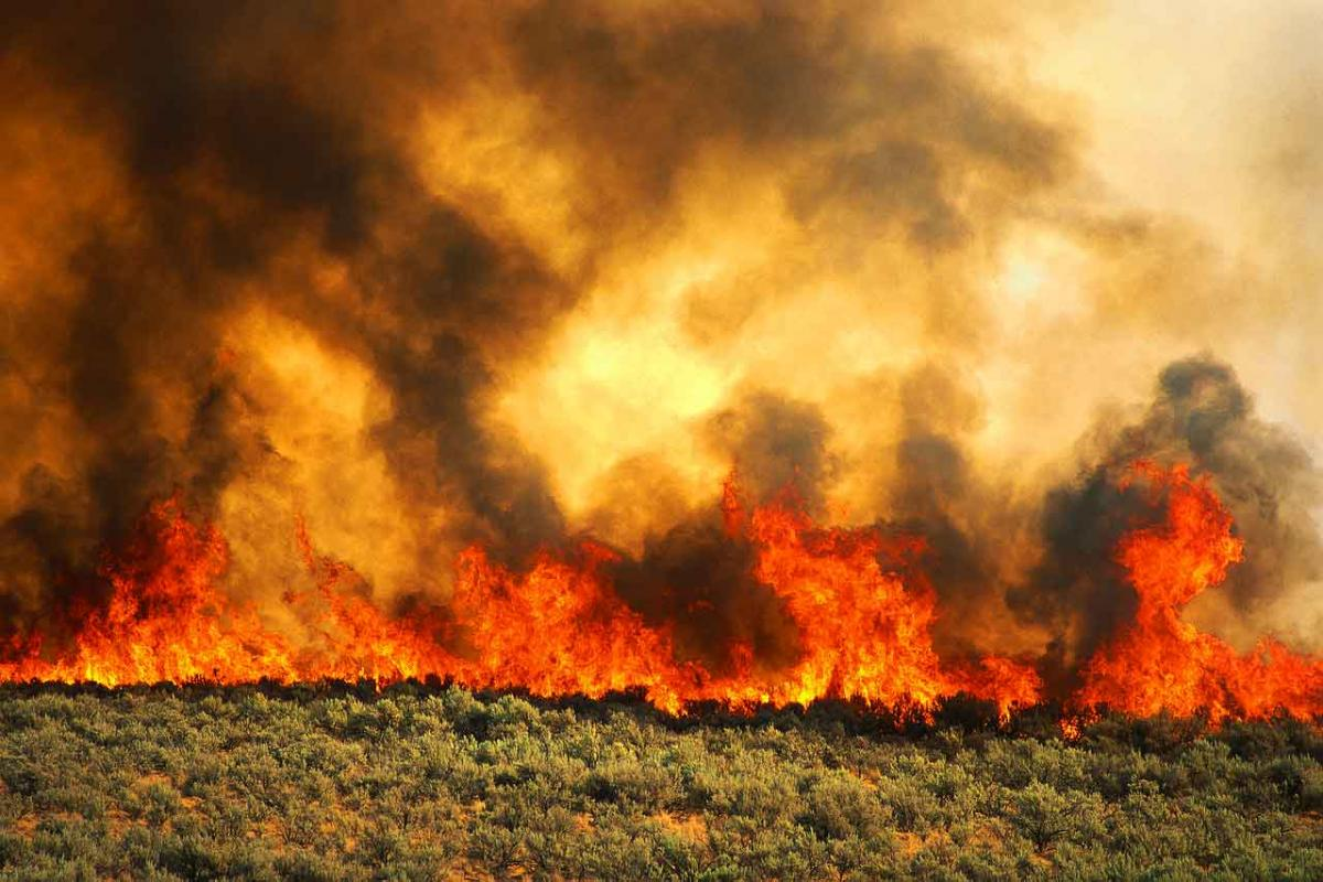 CONTROLLED BURN NEAR PINE VALLEY NOV. 9-10 | East County ...