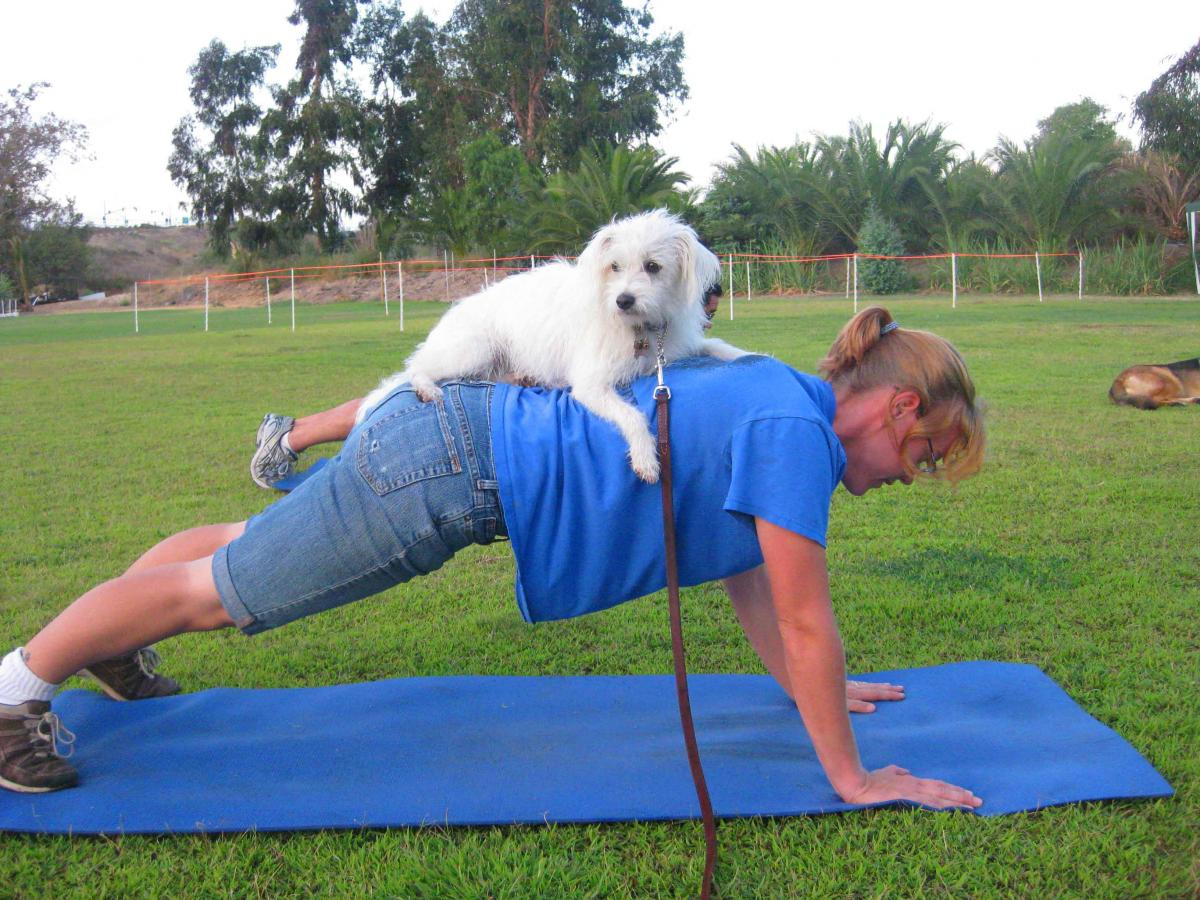 Leash Your Fitness Expands To East County Boot Camp
