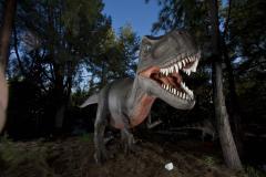 Dino.One_.jpg