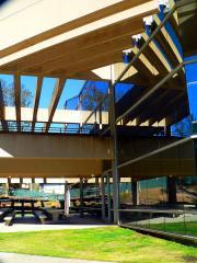 cuyamaca-library-sm.jpg
