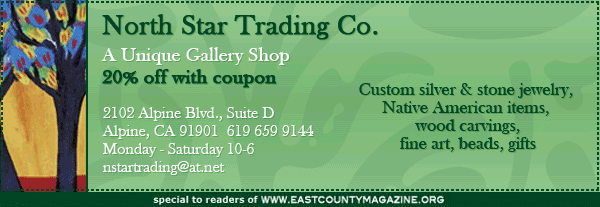 north star trading co