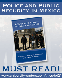 police and public security in mexico