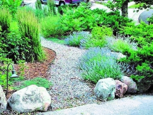 august 30 2015 rancho san diego from tossing the turf to water wise and fire wise landscape designs the water conservation garden at cuyamaca college - Water Conservation Garden