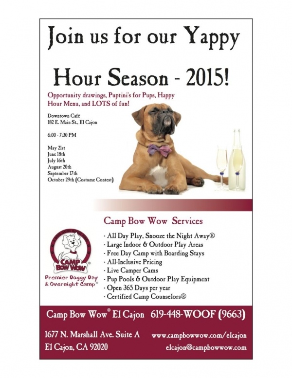 camp bow wow prices