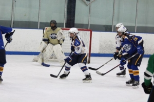 San Diego District Hockey League Grows Hockey In San Diego East