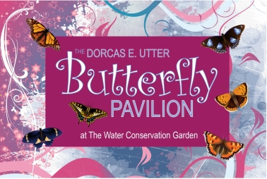 Water Conservation Garden East County Magazine